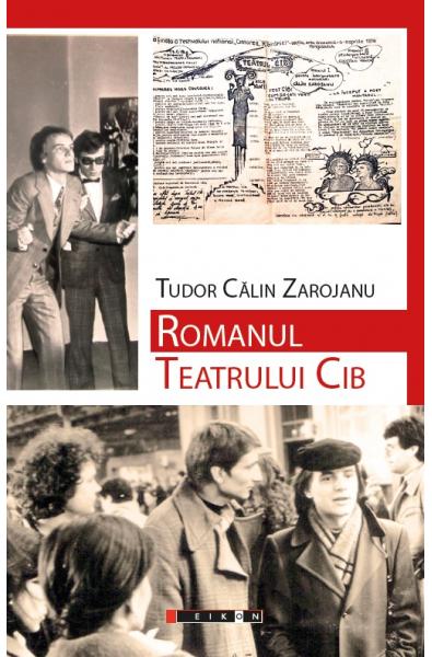 Romanul Teatrului Cib